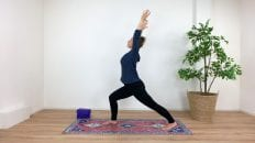 ONLINE YOGA van Yogaplaza