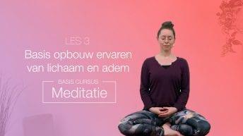 LES 3 Basis opbouw, ervaren van het lichaam en adem | YOGAPLAZA