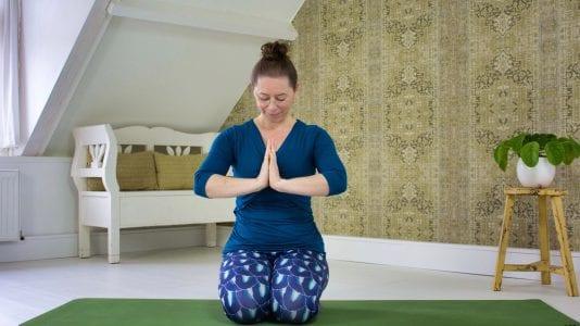 Les 12 Bewustzijn lichaam beweging adem | YOGAPLAZA